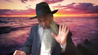 N°371 Histoire : Le Zivoug  est entre les mains d'Hachem
