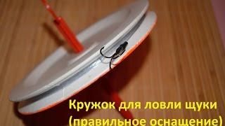Как правильно оснастить летнюю жерлицу на щуку