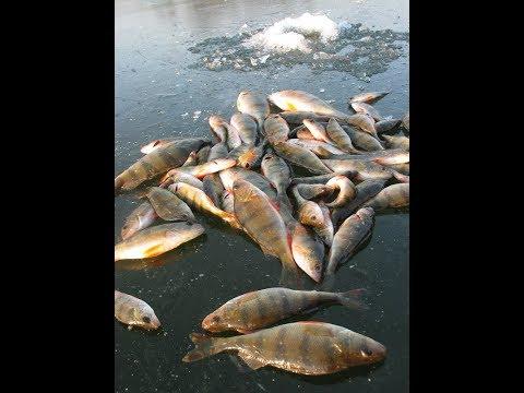 Как сделать супер приспособление для отличной зимней рыбалки