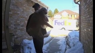 FedEx driver finds lost dog, returns it to Castle Pines owners