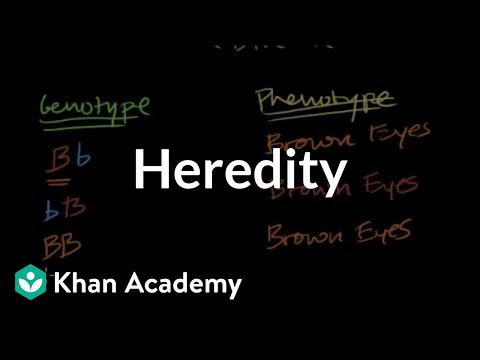 A thumbnail for: Heredity and genetics