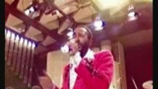 Aint Nothing Like The Real Thing-Marvin gaye&Tammi terrell