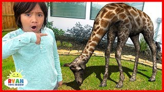 Ryan Pretend Play Hide and Seek with Zoo Animals in our house!!!!