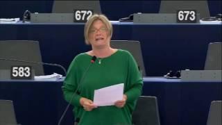 Felszólalás az európai adatcseréről szóló vitában – Strasbourg, 2016.06.08.