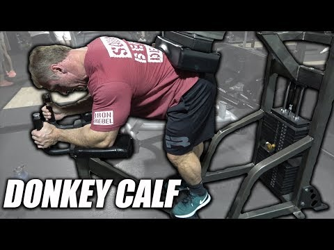 Exercise Index - Donkey Calf Raises