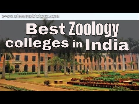 mp4 College Zoology Programs, download College Zoology Programs video klip College Zoology Programs