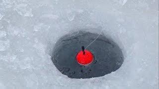 Рыбалка на хариуса в сибири зимой