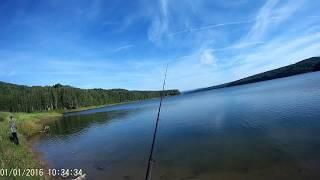 Рыбалка форум залив знаменка квх тугун