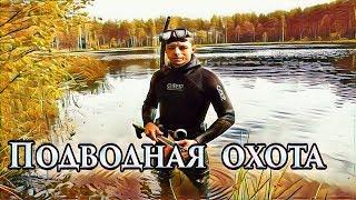 Рыбалка в торжке на лесном озере