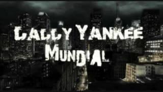 Coraza Divina - Daddy Yankee  ** LYRICS**