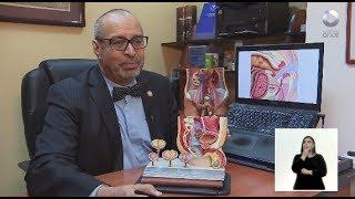 Diálogos en confianza (Salud) - Diagnóstico y tratamiento del cáncer de próstata