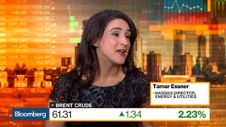 Oil Market Has Cushion From U.S. and OPEC, Nasdaq's Essner Says
