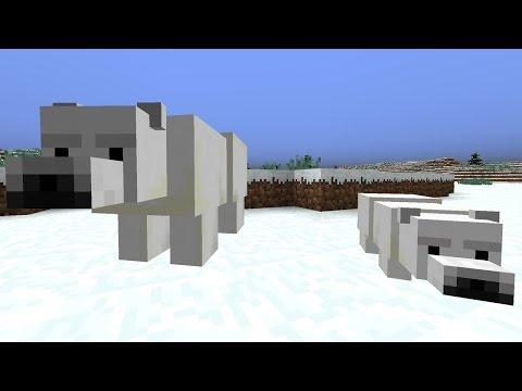 10 Fakten über Minecraft Eisbären / Polarbären
