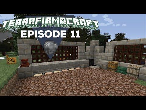 TerrafirmaCraft |S2E11| - Bronze Age Forge