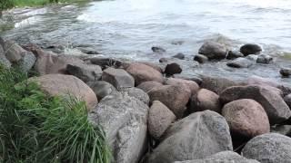 Рыбалка в приморске калининградская область