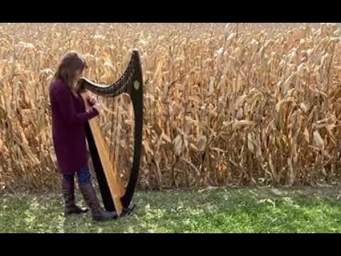 Celtic Harp Meditation in a cornfield