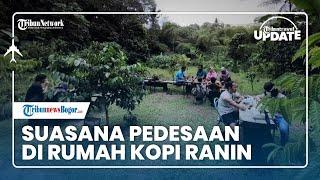 TRIBUN TRAVEL UPDATE: Seruput Kopi dan Menikmati Suasana Pedesaan di Rumah Kopi Ranin Bogor