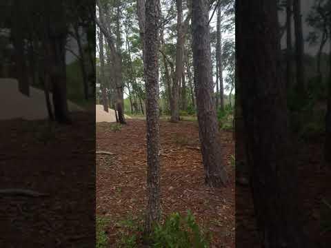 Video Of Point Washington, FL