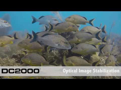 Les Nouveaux produits SEALIFE - Photographie sous-marine