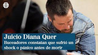 """Buceadores constatan que Diana Quer sufrió un """"shock"""" antes de morir"""