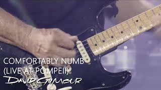 David Gilmour - Comfortably Numb (Live At Pompeii)