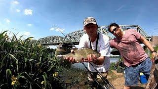 Рыбалка в голландии роермонд