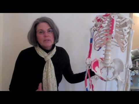 Skurcze mięśni rombu duża