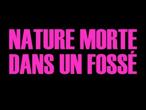 Nature morte dans un fossé - Teaser