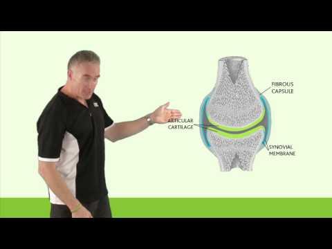 Recenzii privind tratamentul artrozei cu gelatină