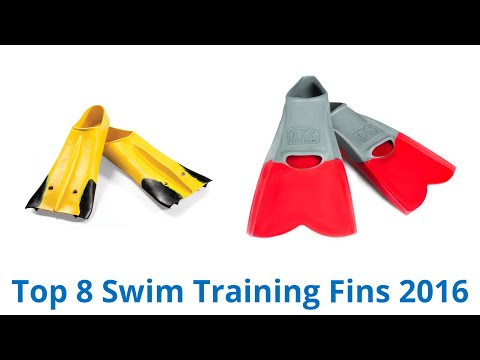 8 Best Swim Training Fins 2016