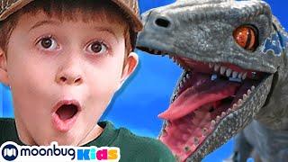 Giant Mystery Egg! T-Rex Dinosaur Surprise | Jurassic Tv | Dinosaurs and Toys | T Rex Family Fun