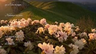 """Morning has broken"" - The Chieftains With Diana Krall & Art Garfunkel - Trad Cast."