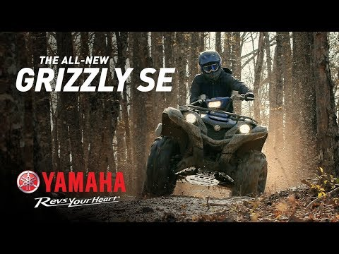 2019 Yamaha Grizzly EPS SE in Ottumwa, Iowa - Video 1