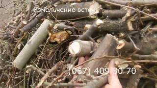 Дереводробилка аренда - видео 3