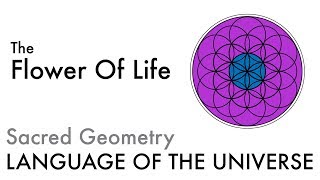 The Flower Of Life - Sacred Geometry