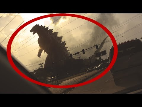5 Gigantic & Mysterious Creatures Caught On Tape!
