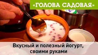 Голова садовая - Вкусный и полезный йогурт, своими руками