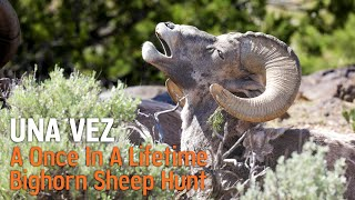 Una Vez - A New Mexico Bighorn Sheep Hunt Experience
