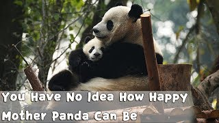 You Have No Idea How Happy Mother Panda Can Be | iPanda