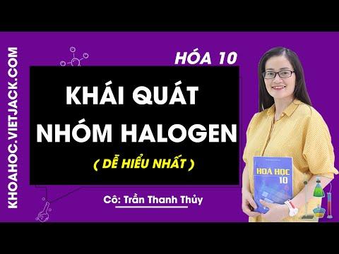 Khái quát về nhóm halogen