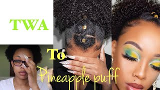 SPICY SUMMER PINEAPPLE PUFF FOR SHORT 4C HAIR 😍 -Fool Proof Sleekness| NO HEAT| Crownedk