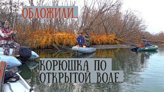 Ловля корюшки на открытой воде в неведении