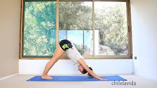 Динамическая йога для начинающих 60 мин | chilelavida
