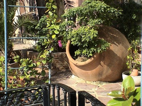 Средиземноморской  (итальянский) стиль сада