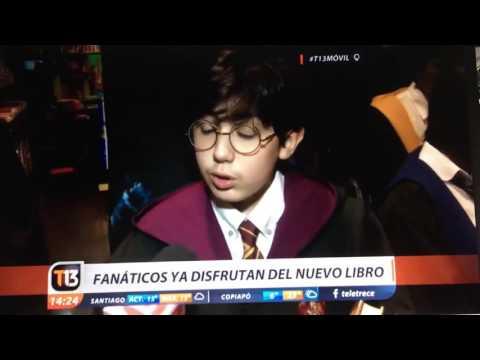 Potter chileno