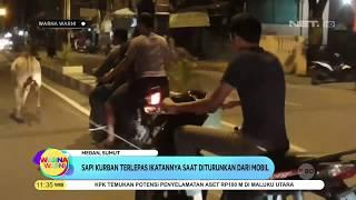Download Video Sapi Kurban Lepas Dan Mengamuk - Warma Warni MP3 3GP MP4