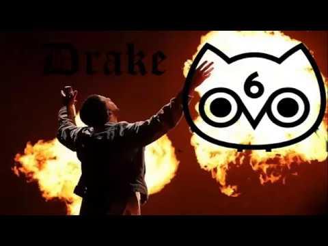 Drake Worships An Ancient Golden Bull Owl
