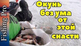 Зимняя рыбалка снасть на окуня