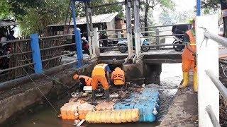 Modal Petugas UPK Badan Air Berani Terjang Arus Deras Kali untuk Angkut Sampah
