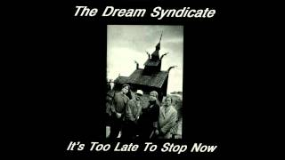 The Dream Syndicate - Cinnamon Girl (Neil Young Cover)